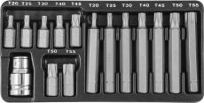 Набор вставок-бит 10 мм  TORX® (30 и 75 мм), Т20-Т55, 15 предметов